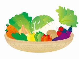 野菜たち2